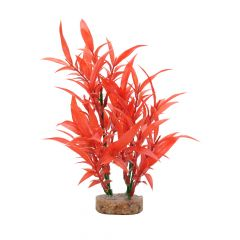 Small image for Fluval Aqualife Plant Scapes Intense Red Hygrophila - 20 cm (8 in)
