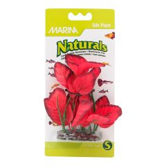 Small image for Marina Naturals Red Foreground Silk Plant - 12.5 - 15 cm (5-6in)