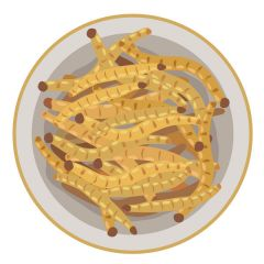 Mealworms Small  (Qty 100)